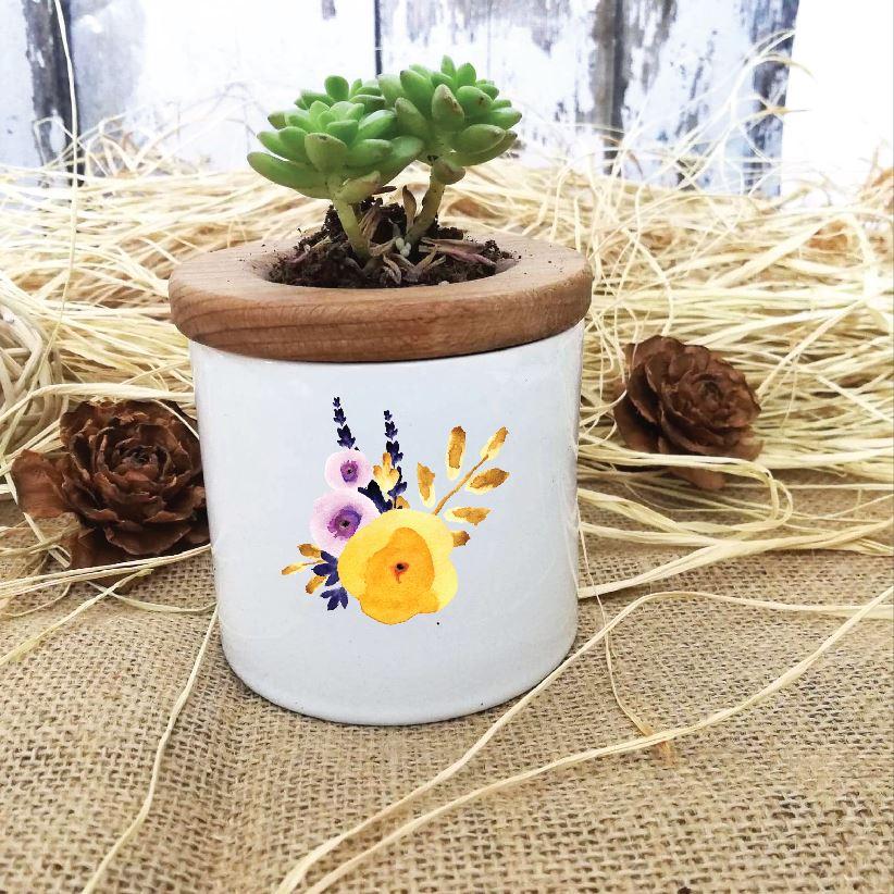 Çiçek Tasarımlı Özel Saksıda Canlı Sukulent -6