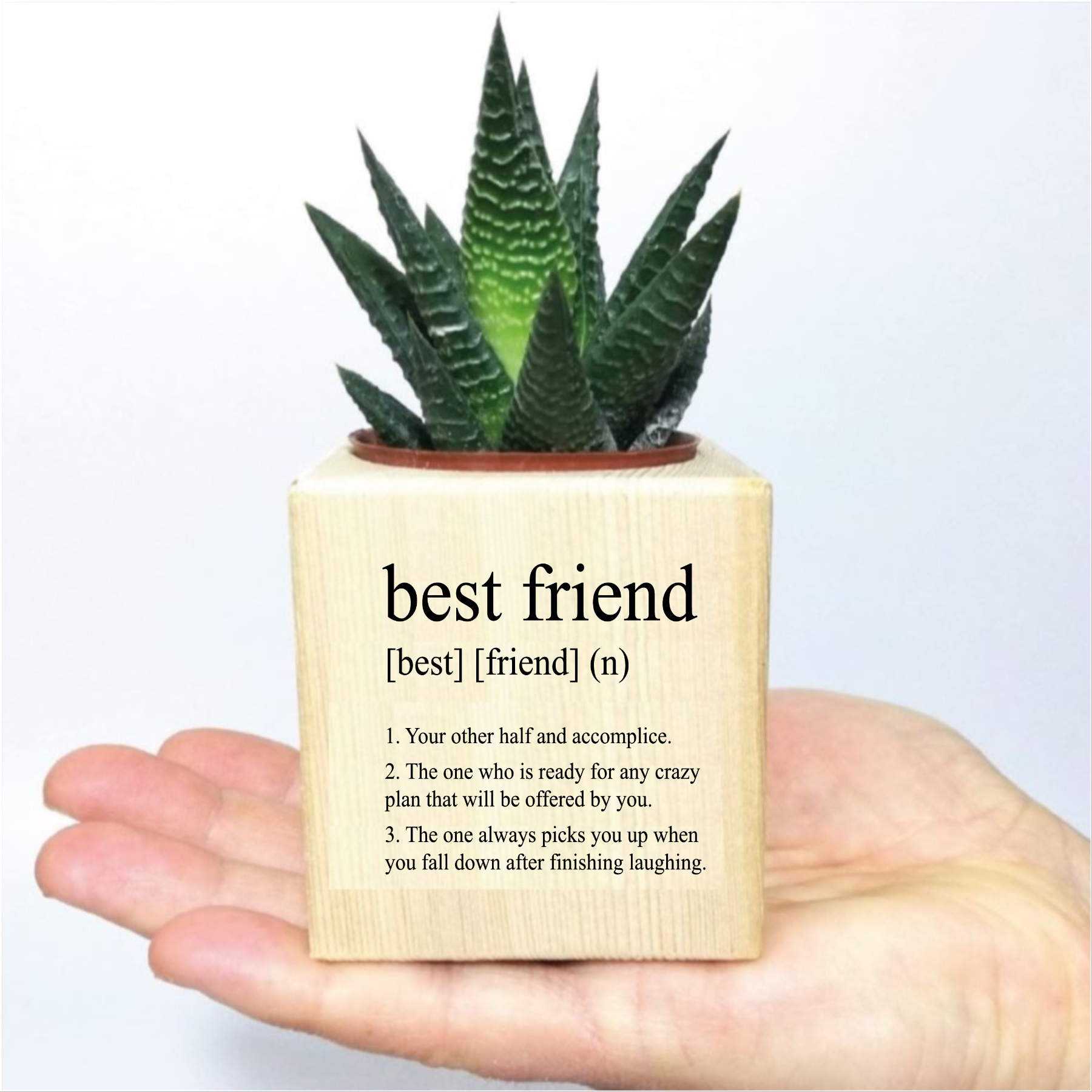 Arkadaşa Best Friend Özel Tasarımlı Ahşap Küp Saksıda Sukulent