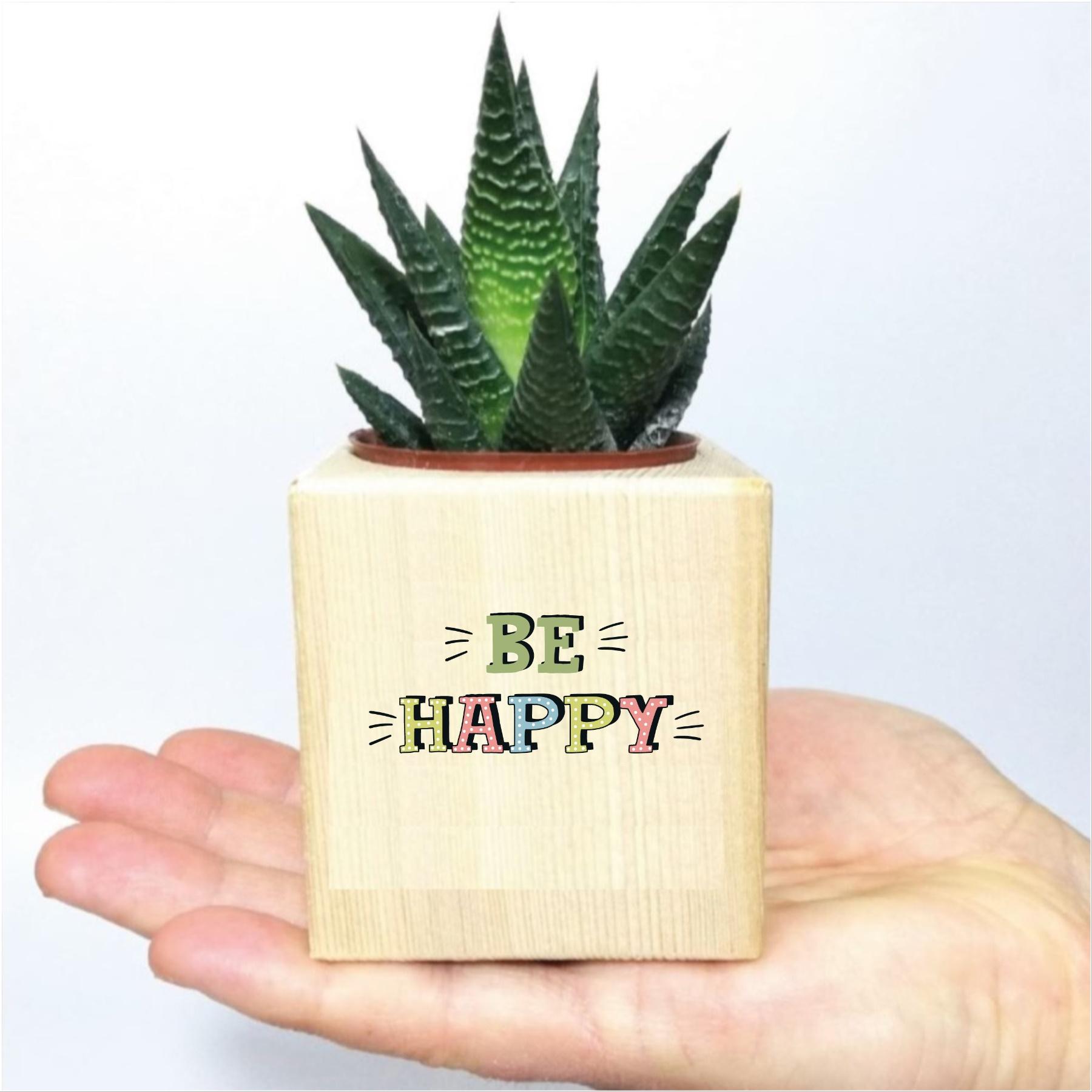Be Happy Tasarımlı Ahşap Küp Saksıda Sukulent