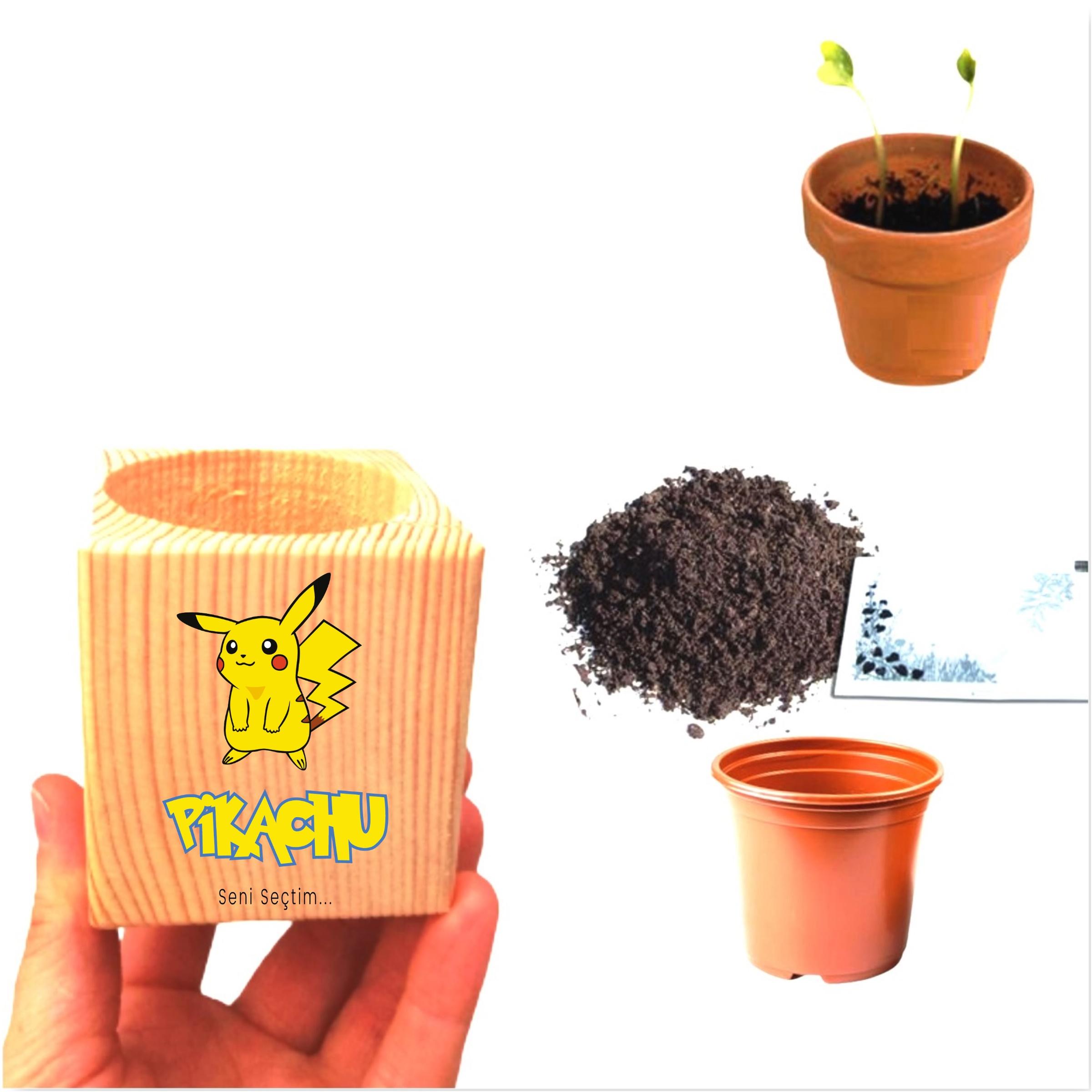 Özel Tasarım Seni Seçtim Pikachu Papatya Ekim Seti