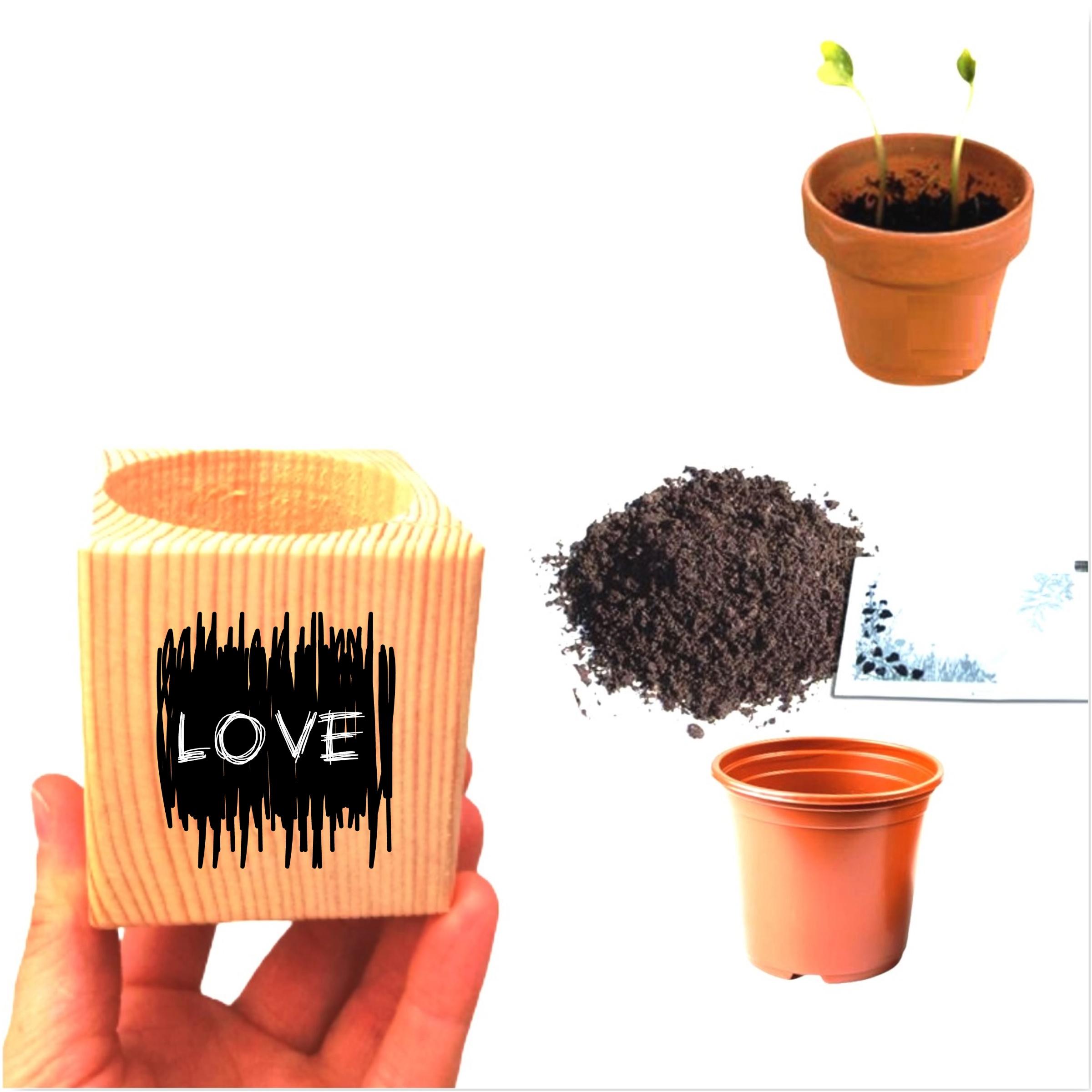 Özel Tasarım Love Yazılı Sevgiliye Hediyelik Papatya Ekim Seti