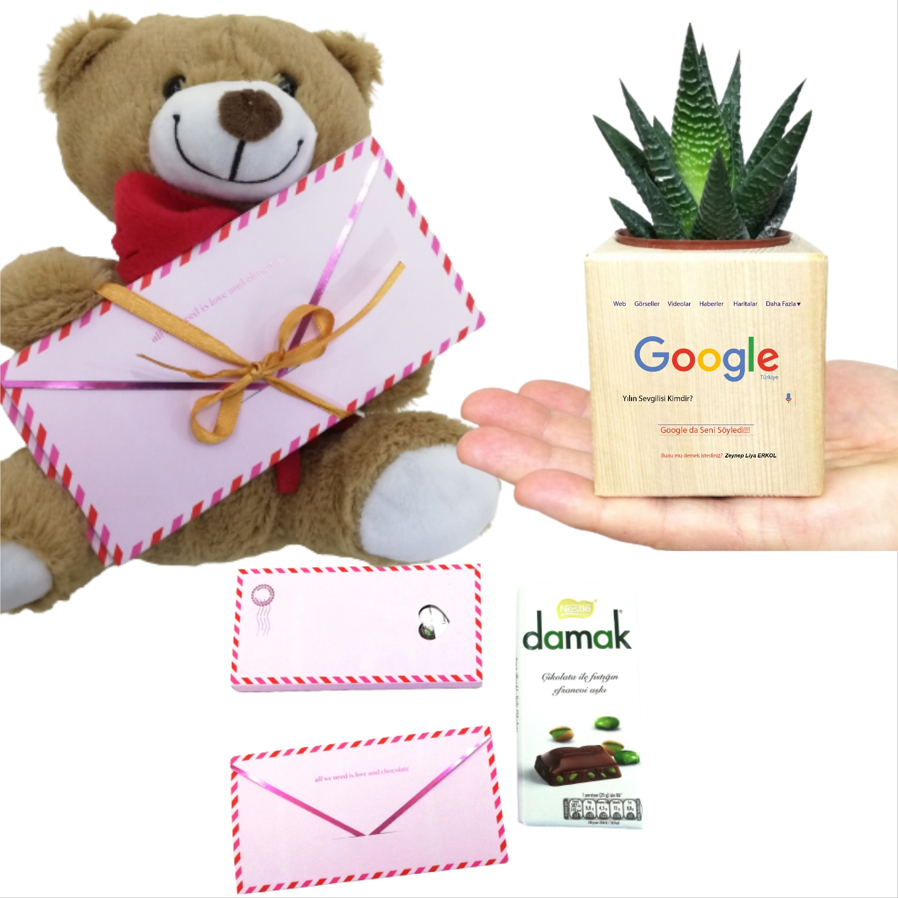 Kişiye Özel Google Temalı Küp Saksıda Sukulent, Ayıcık ve Çikolata Hediye Seti