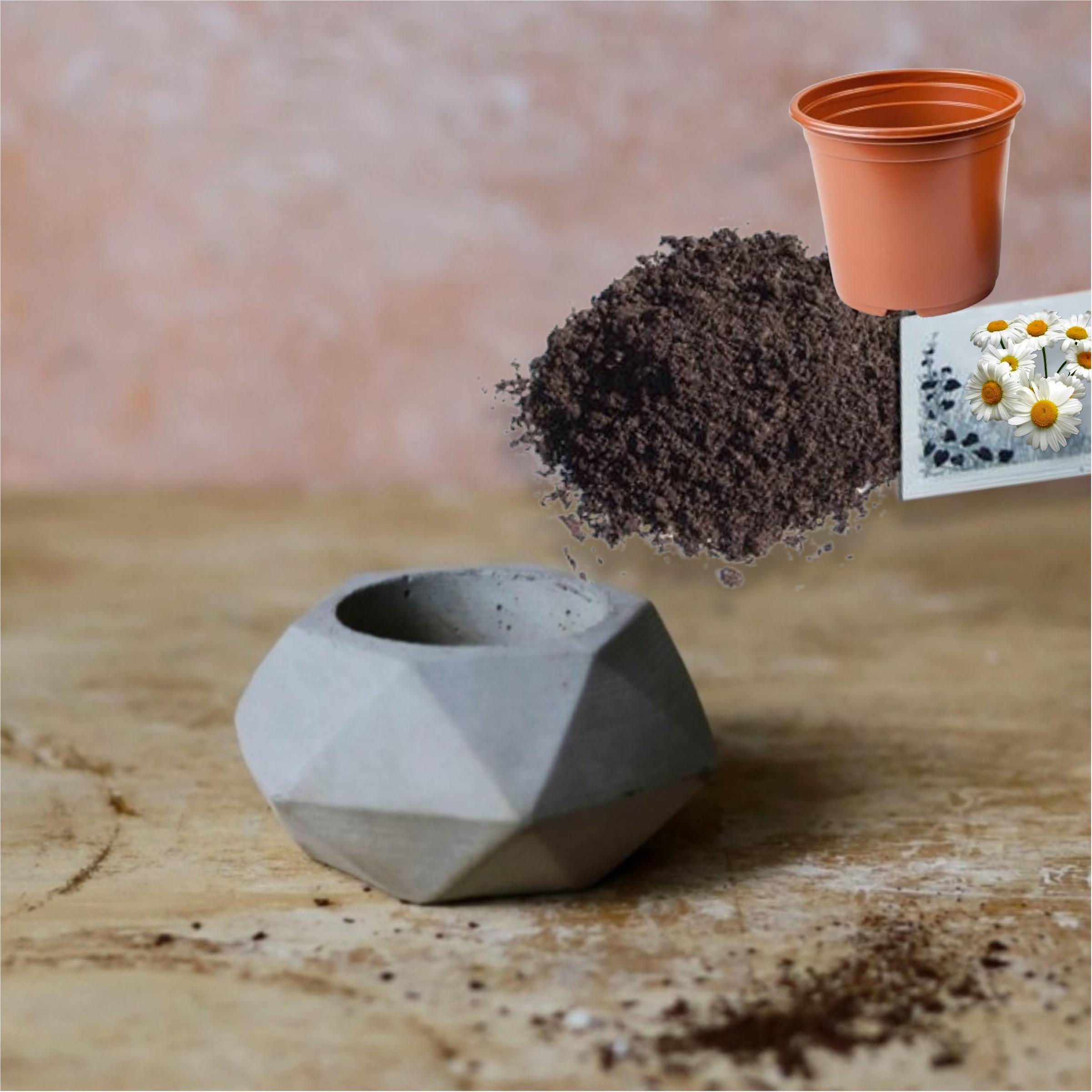 Hediyelik Beton Saksı ve Çiçek Yetiştirme Seti